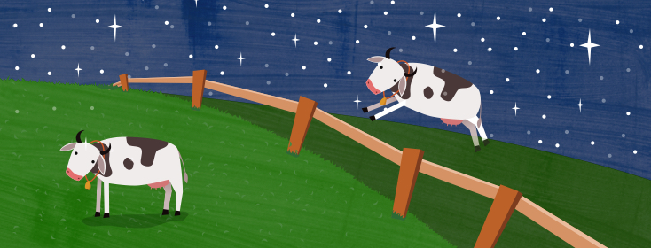 An image of a cow jumping with joy over a fence.