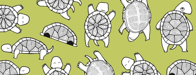 A collage of turtles in different states of fatigue. One main turtle looking back over its shoulder.