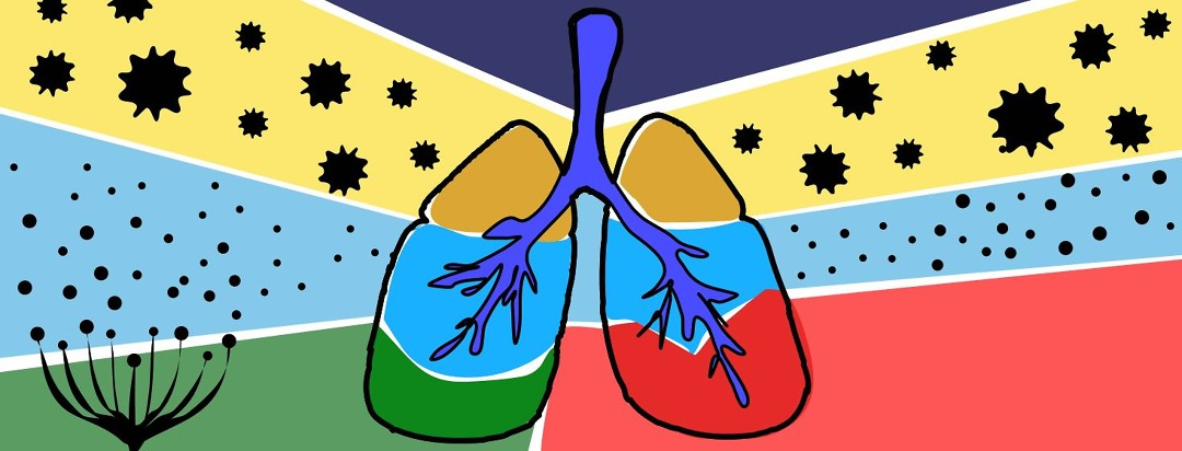 Lungs with pollen and other allergens blowing by.