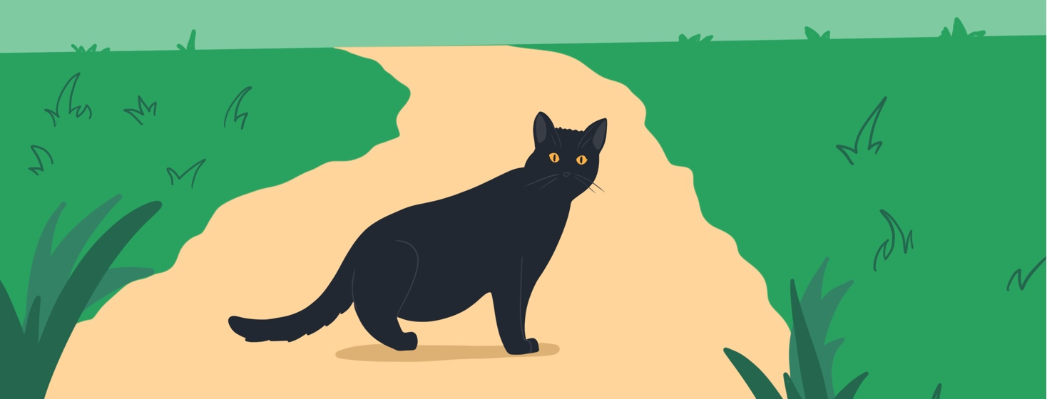 A black cat is shown crossing the viewer's path