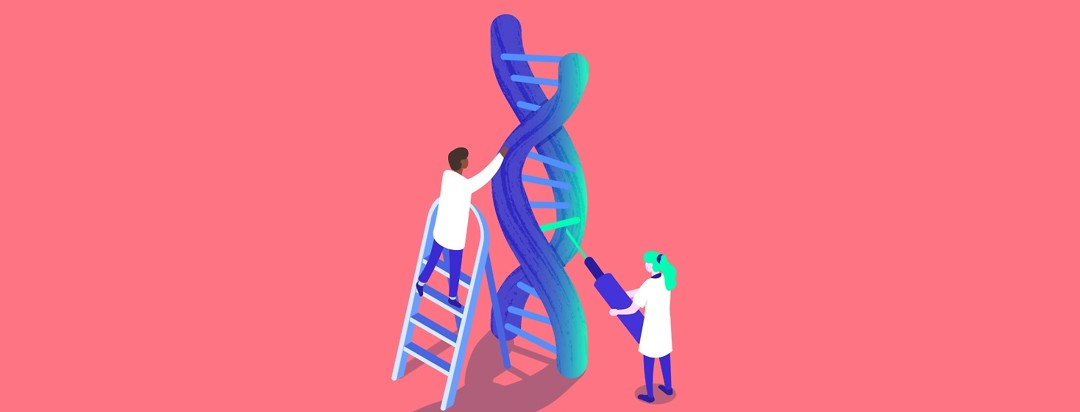 Two doctors inspect a double helix to administer targeted genetic therapy for cancer containing biomarkers