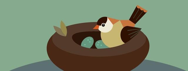 Nesting image